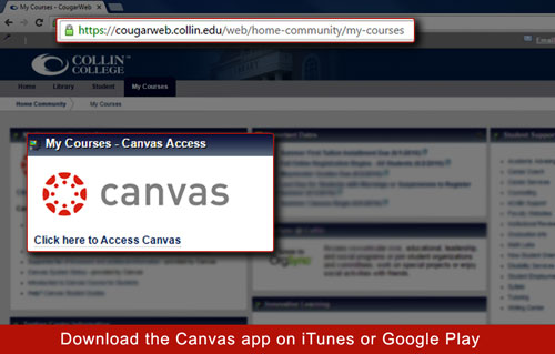 Canvas in CougarWeb